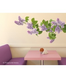 Sticker Decorativo - Lilas 152.753